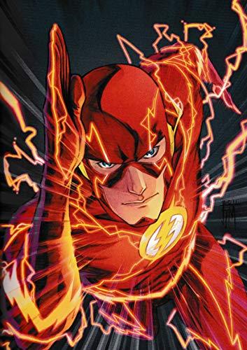 PostersNPrints DC Comics The Flash New 52 Volume 1 01 260...