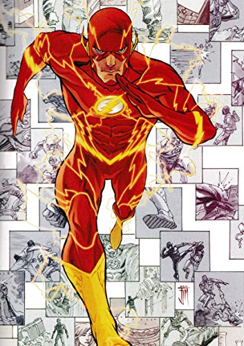 PostersNPrints DC Comics The Flash New 52 Volume 1 Concept...